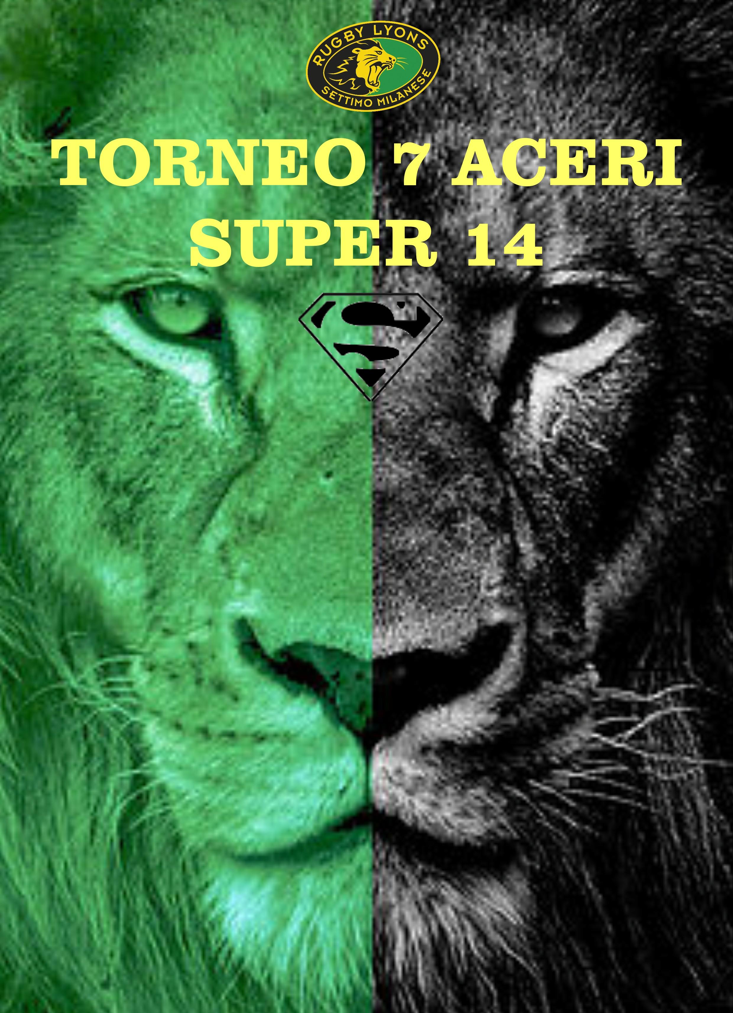 "Torneo ""Super14"""