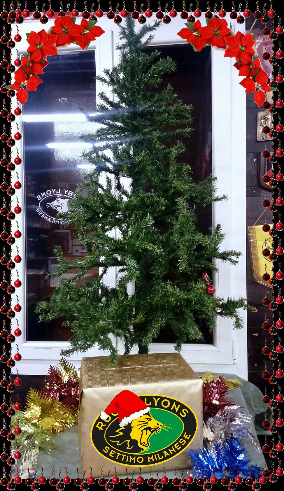 Natale Minirugby